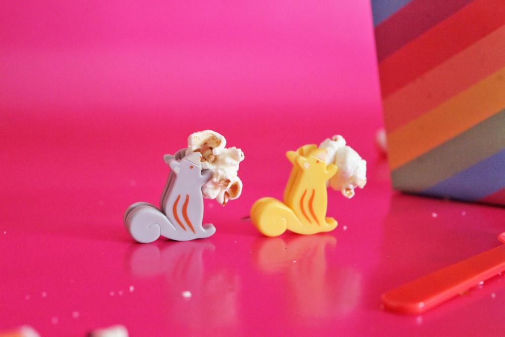 festival-pop-corn-supercolors-scoiattoli-2