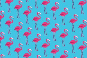 fenicotteri-spiagge-di-biscotti-supercolors-pattern-carta-regalo.jpg