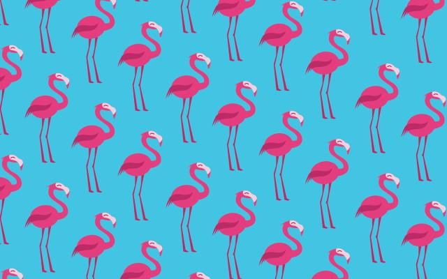 fenicotteri-spiagge-di-biscotti-supercolors-pattern-fenicotteri-flamingo-carta-4